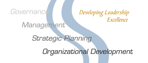 Governance, Management, Strategic Planning, Organizational Development - Developing Leadership Excellence